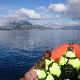 Seløy Kystferie – boat trips with RIB.