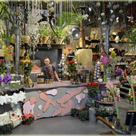 Etcetera – Norges mest spektakulære blomsterbutikk ?